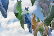 Fraldas ecológicas reutilizáveis