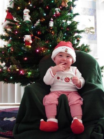 Bebé e pinheiro de natal